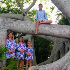 useppa-island-tree